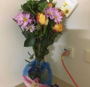 Get Well flowers from the staff